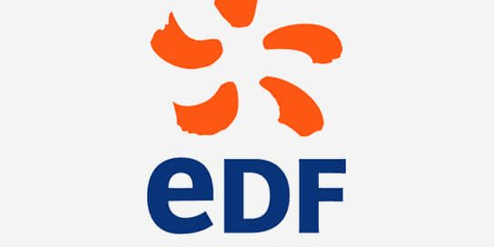EDF Energy Case Study